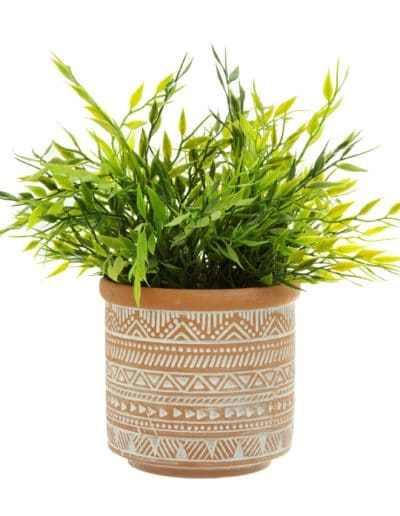 Aztec Terracotta Pot on White Background With Plant