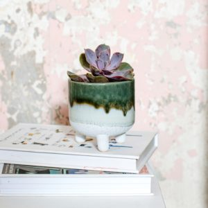 Bohemian green planter lifestyle