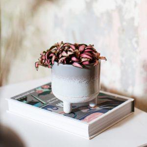 Bohemian Grey Planter