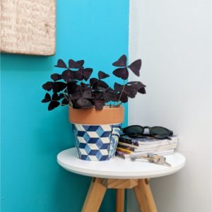Chic Terracotta Blue Pattern Planter