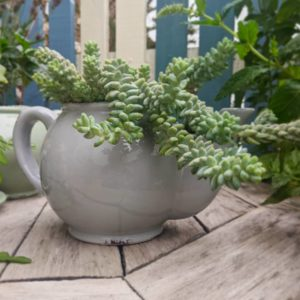 Grey Teapot Planter
