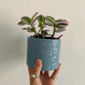 Little Blue Plant Pot
