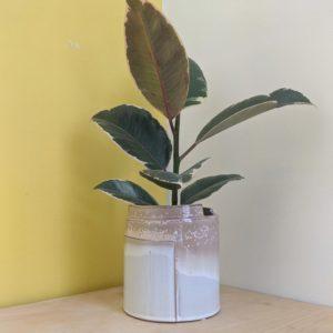 Big Wrap Style Planter