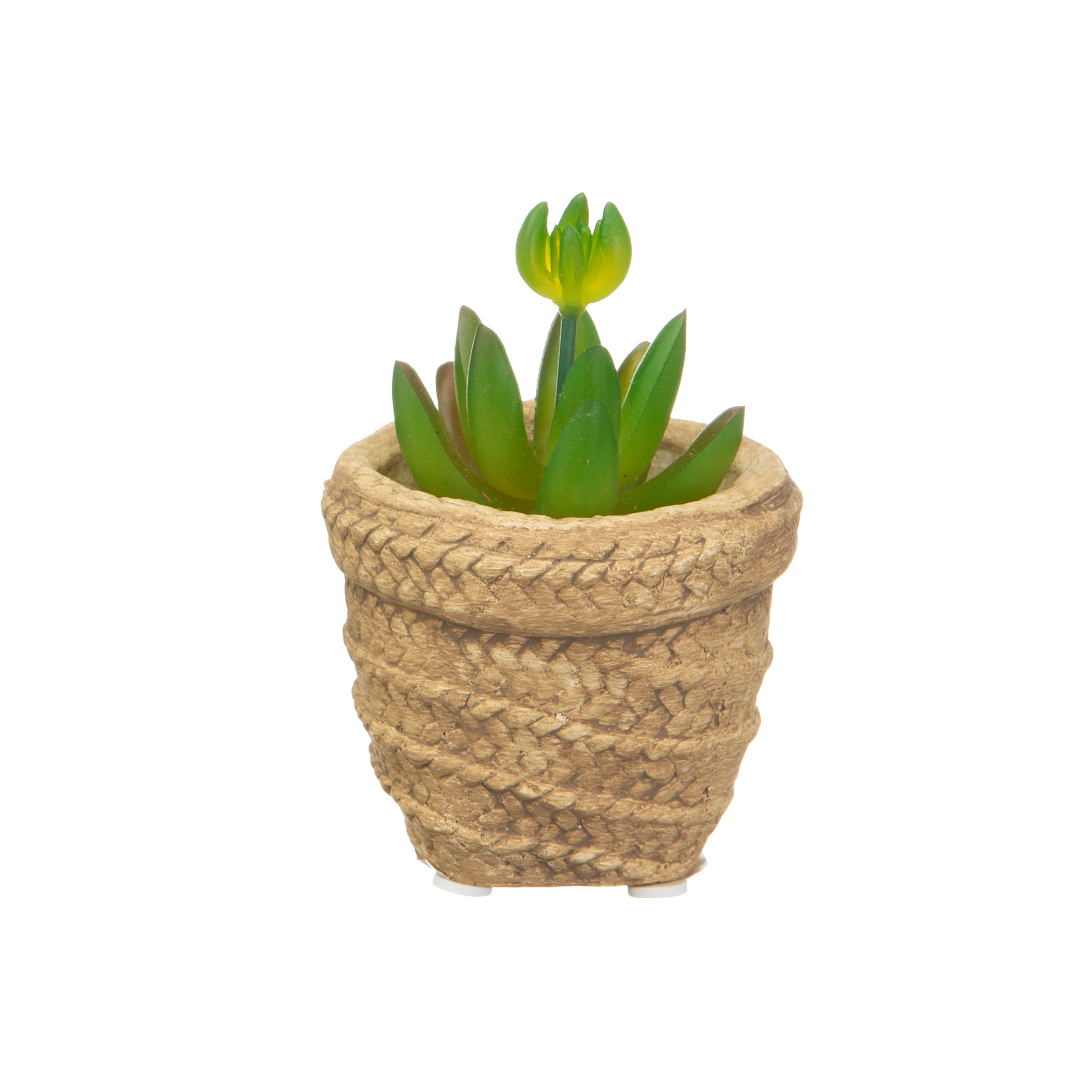 Mini woven look basket pot with plant