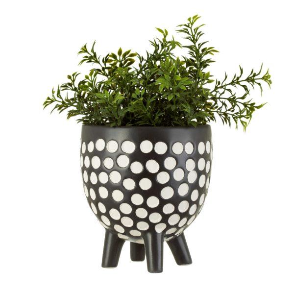 Monochrome Polka Dot Pot with Plant