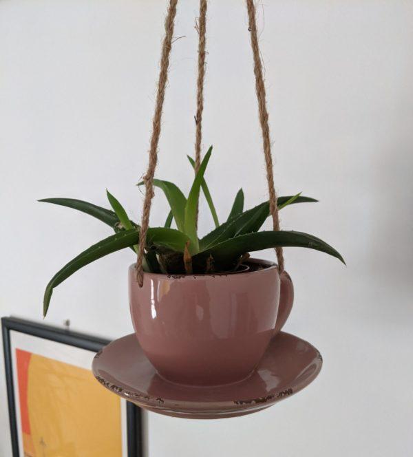 Pink Hanging Teacup Pot
