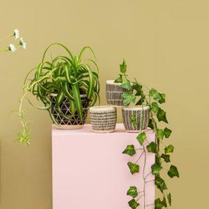 Scandi Style Planters Lifestyle