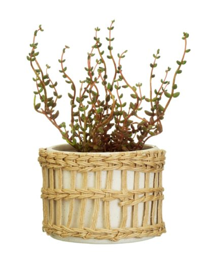 Speckled Stoneware Pot With plant