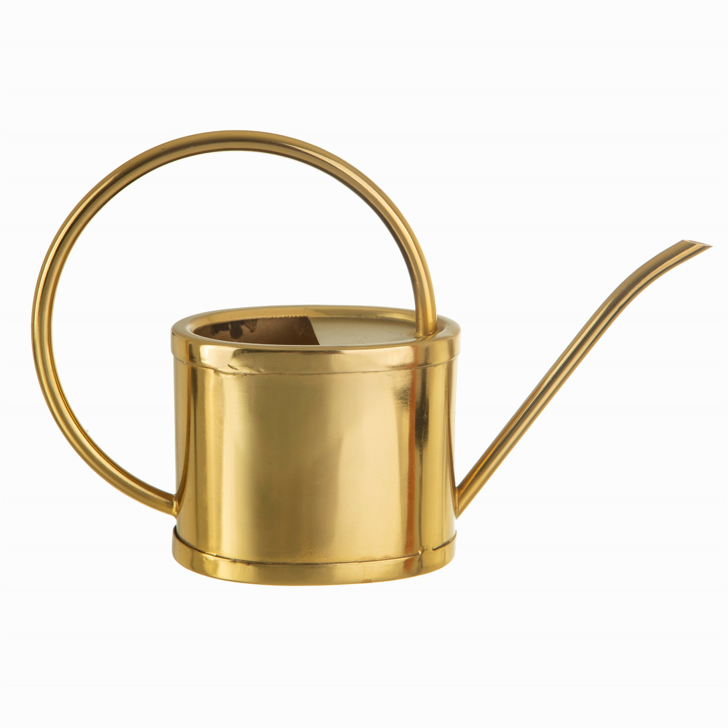 Gold Watering Can White Background
