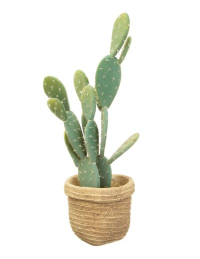 Woven Look Basket Style Planter White Background With Plant