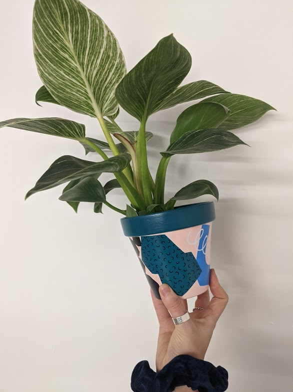 Hand painted abstract pot