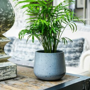 Speckled Grey Pot