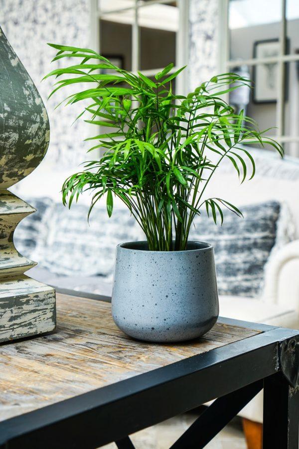 Speckled Grey Pot