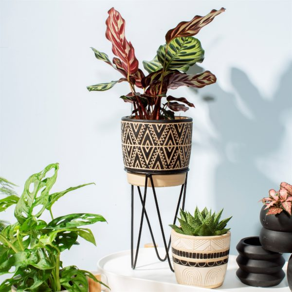 Tribal Patterned Planter & Metal Stand