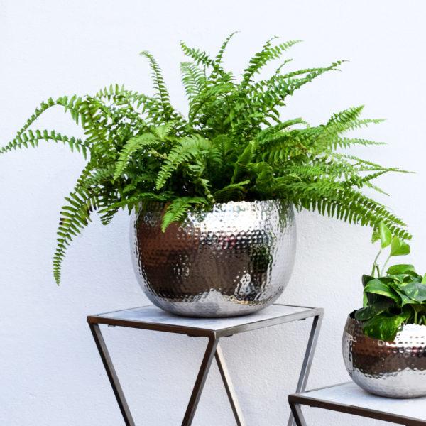 Hammered Iron Plant Pot