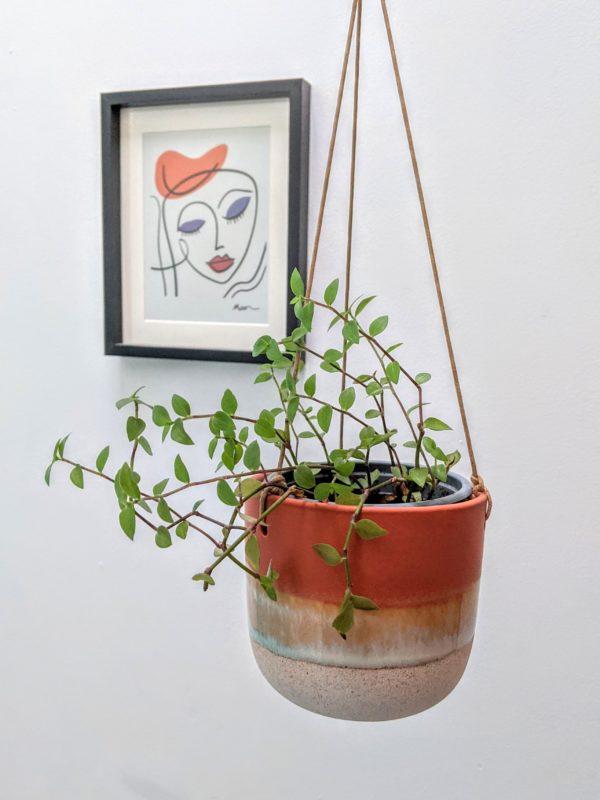 Hanging Stoneware Plant Pot