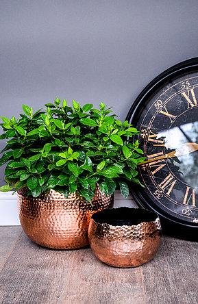 18.5cm Hammered Copper Planter