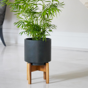 Contemporary Dark Cement Planter With Stand