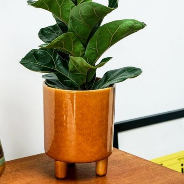 Big Yellow Plant Pot with legs