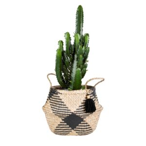 Black Seagrass Belly Basket Planter with Plant