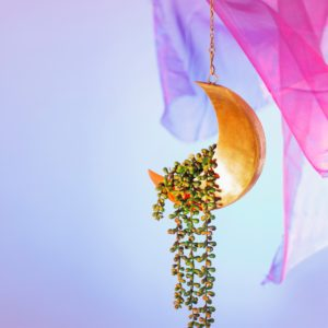 Hanging Iron Moon Planter